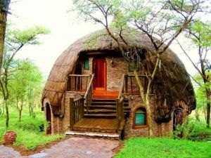 Оригинальное жилище