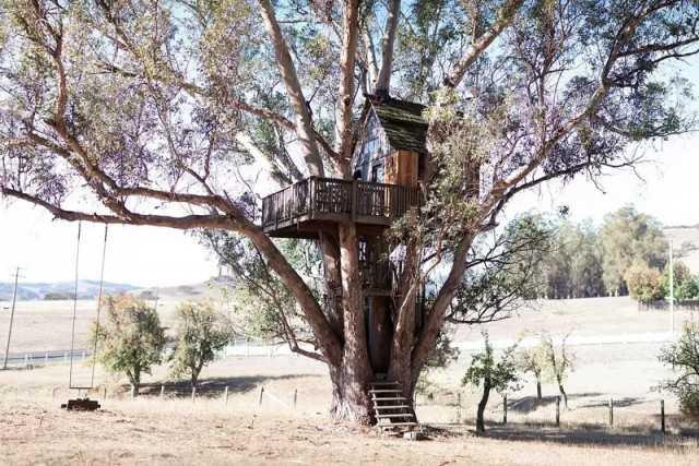 небольшой домик на дереве