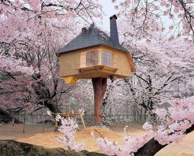 оригинальный домик на дереве